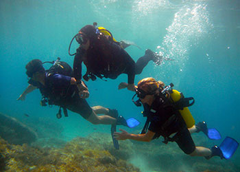 The sponge divers - Dive Center Kos Island